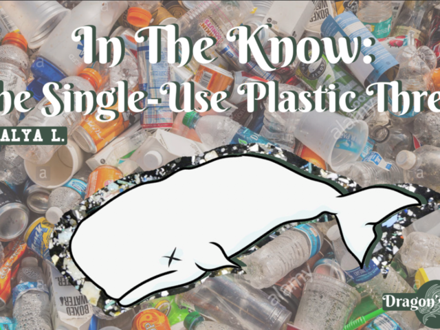 It Starts With Us: How We Can End the Single-Use Plastic Threat