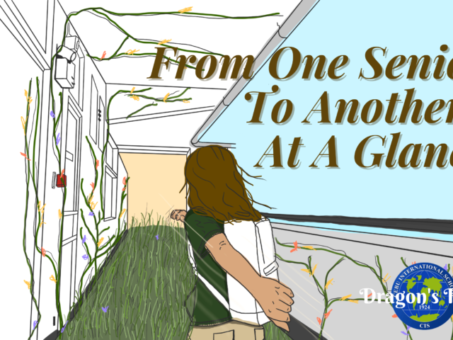From One Senior to Another: At A Glance